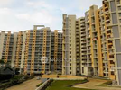 4 BHK Flat  For Sale  In Ajmera Housing Society In Pimpri Chinchwad