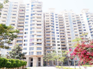 3 BHK Flat  For Sale  In Godrej Frontier In Sector-80