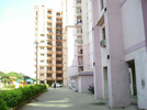 3 BHK Flat  For Sale  In Saffron Kanishka Tower In Sector 34