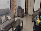 2 BHK Flat  For Rent  In Daisy Dahlia Daffodil In Jayanagar