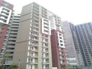 4 BHK Flat  For Sale  In Lotus Panache In Sector 110