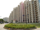 3 BHK Flat  For Sale  In Parsvnath Panorama In Omega Ii