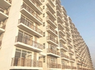 1 BHK Flat  For Rent  In Avl 36 Gurgaon In Sector-36