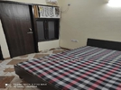 1 BHK Flat  For Rent  In Shanti Apartment  In Sector 28
