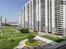 4 BHK Flat  For Rent  In Dlf Ultima In Sector-81
