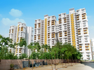 3 BHK Flat  For Sale  In Bptp Princess Park In Sector 86