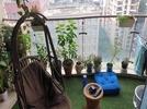 3 BHK Flat  For Rent  In Nahar Amrit Shakti In Chandivali, Powai