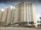3 BHK Flat  For Rent  In Rmz Galleria Residences In Yelahanka