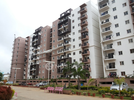 3 BHK Flat  For Rent  In Sjr Equinox Apartments In Electronic City