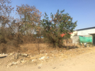 Industrial Shed for sale in Pirangut , Pune