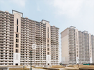 3 BHK Flat  For Sale  In Dlf Express Greens In Imt Manesar