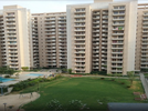3 BHK Flat  For Sale  In Bestech Park View Spa Next In Sector-67