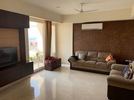 3 BHK Flat  For Rent  In Dlf The Primus In Sector 82a