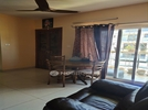 2 BHK Flat  For Rent  In Dev Infra 14 Lakeshore In Harlur