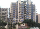 4 BHK Flat  For Sale  In Royal Court In Sector 39