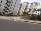 4+ BHK Flat  For Rent  In Emaar Palm Hills In Sector 77