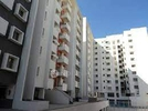 2 BHK Flat  For Sale  In Dsr Rainbow Heights In Hsr Layout