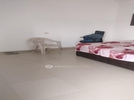 1 BHK Flat  For Rent  In Julkha Niwas In Sector 55