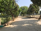 Industrial Shed for sale in Sector 51 , Faridabad