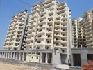 1 BHK Flat  For Rent  In Pivotal Devaan In Sector-84