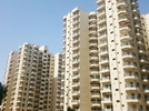 4 BHK Flat  For Sale  In Palm Grove Heights In Sector 52