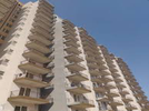 1 BHK Flat  For Sale  In Apex Our Homes In Sector-37 C