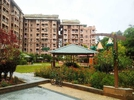 3 BHK Flat  For Sale  In Sjr Park Vista In Haralur