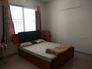 2 BHK Flat  For Rent  In Prestige Ferns Residency, Haralur In Haralur