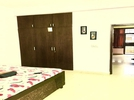 3 BHK Flat  For Rent  In Lotus Floors In Sector 50