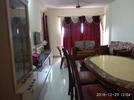 1 BHK Flat  For Rent  In Ozone Evergreens In Kasavanahalli