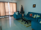 3 BHK Flat  For Sale  In Ninex Corona In Sector-37 C