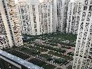 3 BHK Flat  For Sale  In Dlf Capital Greens In Moti Nagar