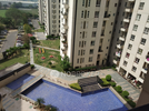 3 BHK Flat  For Rent  In Monsoon Breeze In Sector 78
