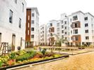 3 BHK Flat  For Rent  In  Nexterra In Chennai