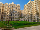2 BHK Flat  For Rent  In Avl36gurgaon In Sector 36a,