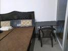 1 BHK Flat  For Rent  In Avl 36 Gurgaon In Avl36a Gurgaon