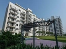 3 BHK Flat  For Rent  In Vatika India Sovereign Next In Sector-82 A