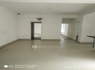 3 BHK Flat  For Rent  In Ad In Tulip Sector 69 Gurgaon = Tulip Project Gurgaon