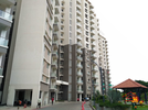 2 BHK Flat  For Rent  In Puravankara Purva Seasons In C V Raman Nagar