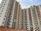 1 BHK Flat  For Sale  In Aangan Gurgaon By Adani In Sector 89a