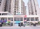 1 BHK Flat  For Sale  In Sikka Karmic Greens In Sector-78