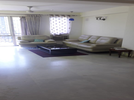 4 BHK Flat  For Rent  In Belvedere Towers In Dlf Phase 2