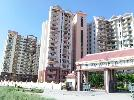 3 BHK Flat  For Rent  In Hm World City In Jp Nagar