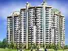 3 BHK Flat  For Sale  In Sidhartha Estella In Sector-103