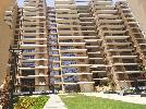 1 BHK Flat  For Rent  In Signature Global In Sector 81