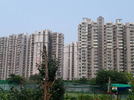 3 BHK Flat  For Sale  In Supertech Capetown In Sector 74