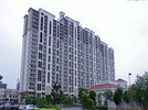 3 BHK Flat  For Sale  In Dlf New Town Heights In Sector 91